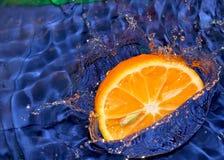 被丢弃的柑橘 图库摄影