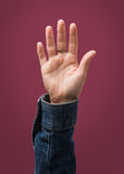被举的女性手 免版税库存图片