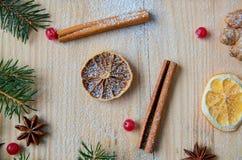 被仔细考虑的酒的搽粉的香料或圣诞节面包店桔子、茴香、桂香、姜和新鲜的红色荚莲属的植物莓果在木桌上 库存照片