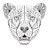 被传统化的猎豹顶头zentangle 库存图片