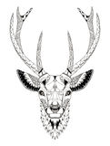 被传统化的鹿顶头zentangle 库存图片