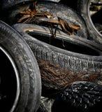 被佩带的轮胎 库存照片