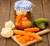 被保存的和新鲜蔬菜 免版税库存图片