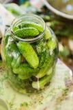 被保存的黄瓜-全国俄国桌布由亚麻布制成 库存图片