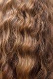 被修剪的豪华发光的波浪棕色头发 免版税库存图片