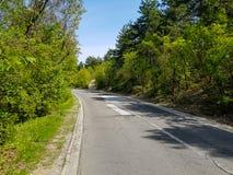 被修理的路的照片在森林里 免版税库存图片