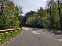 被修理的路的照片在森林 免版税库存照片
