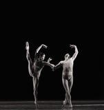 被倒置的图象古典芭蕾` Austen汇集` 库存照片