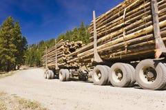 被停止的采伐的卡车 免版税图库摄影