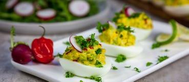 被充塞的鸡蛋用avocad沙拉-健康早餐 库存图片