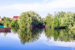 被充斥的房子和树 免版税库存照片