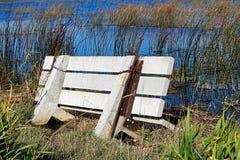 被充斥的水泥长凳和下沉入沼泽 免版税库存图片