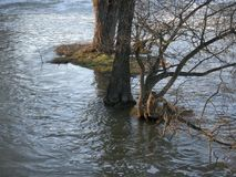 被充斥的河在中欧 洪水和风暴非常共同归结于气候变化 水,洪水 免版税库存照片