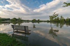 被充斥的湖 免版税图库摄影