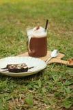 被冰的可可粉用在绿草的果仁巧克力 库存照片