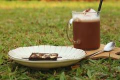 被冰的可可粉用在绿草的果仁巧克力 免版税库存照片