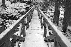 被冰的木人行桥在黑森林里 库存照片