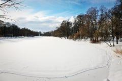 被冰的池塘在多雪的公园 免版税库存图片