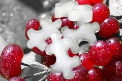 被冰的浆果 库存照片