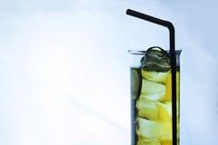 被冰的海岛长的茶 库存图片