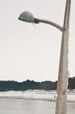 被冰的路灯柱 库存照片