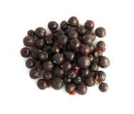 被冰冻干燥的蓝莓 免版税库存照片