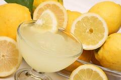 被击碎的冰柠檬 免版税库存照片