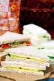被分类的三明治 免版税库存图片