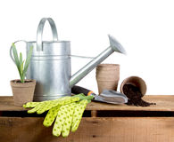 被分类的园艺工具 免版税库存照片