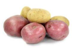 被分类的土豆 免版税库存图片