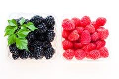 被分类的浆果 免版税库存照片