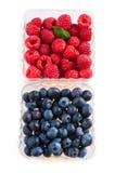 被分类的浆果 库存照片