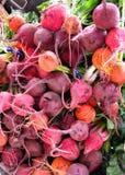被分类的甜菜市场 免版税库存图片