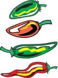 被分类的胡椒 向量例证