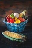 被分类的菜,南瓜,夏南瓜,黄瓜,蕃茄,大蒜,玉米,在一个美丽的柳条筐的胡椒收获 免版税库存图片