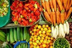 被分类的蔬菜 库存照片