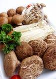 被分类的蘑菇盛肉盘 免版税库存图片
