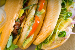 被分类的panini三明治 库存图片