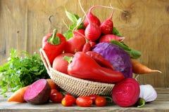 被分类的另外红色菜 免版税库存照片