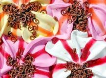 被分类的奶油色冰 免版税库存照片