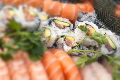 被分类的日本寿司 库存图片