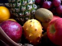 被分类的果子 库存照片