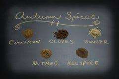 被分类的秋天香料 免版税库存照片