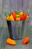 被分类的胡椒和辣椒在金属用桶提与水滴垂直格式 免版税库存图片