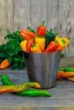被分类的胡椒和辣椒在金属用桶提与水滴垂直格式 免版税库存照片