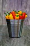 被分类的胡椒和辣椒在金属用桶提与水滴垂直格式 图库摄影