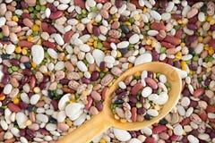 被分类的豆和豆类背景纹理  库存图片