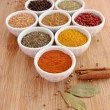 被分类的香料用在前景的辣椒粉 库存图片