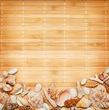 被分类的贝壳和珊瑚在竹背景 免版税库存图片