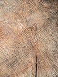 被切开的木头纹理  库存图片